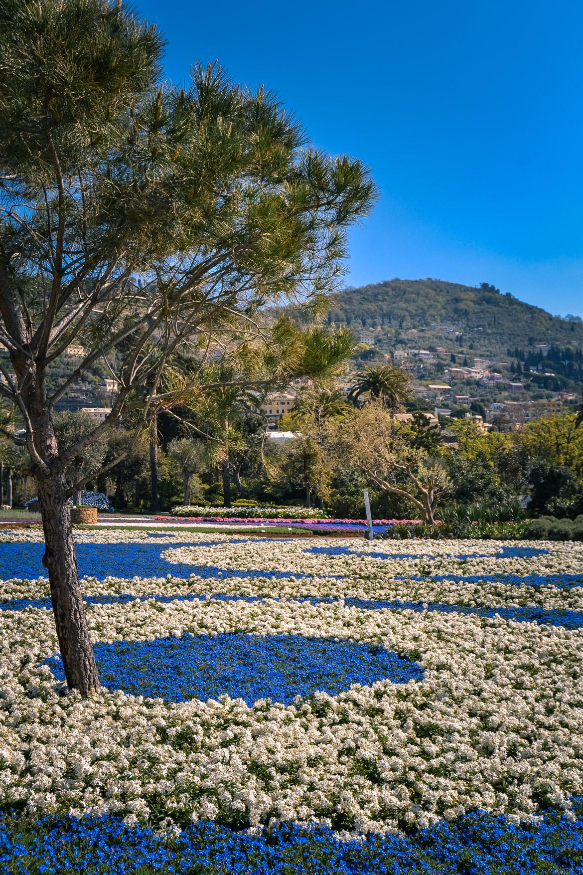 Euroflora Liguria - in Viaggio con Monica