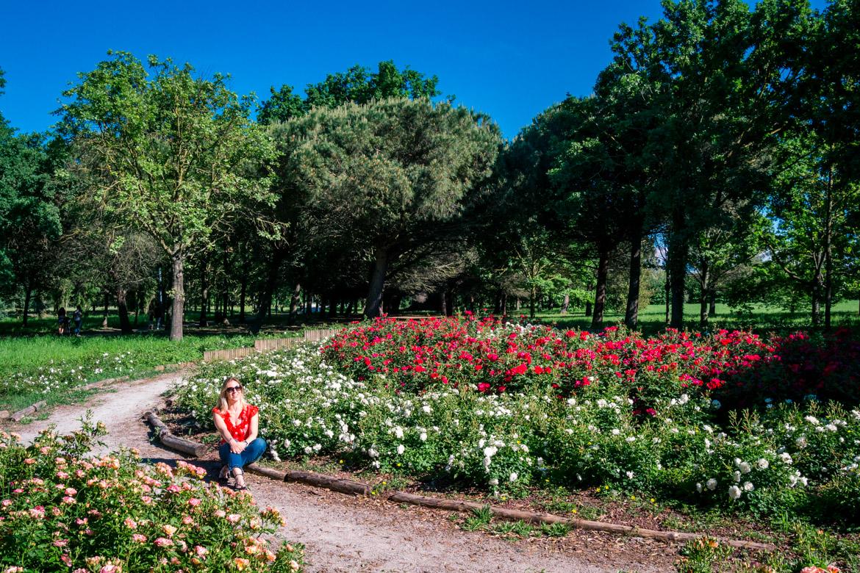 Igea Marina - Parco del Gelso -roseto - Monica Bruni - In Viaggio Con Monica