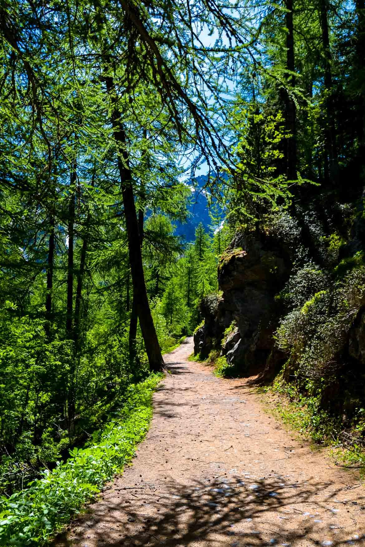 Valle d'Aosta Escursione al Lago d'Arpy - sentiero nel bosco - In Viaggio Con Monica