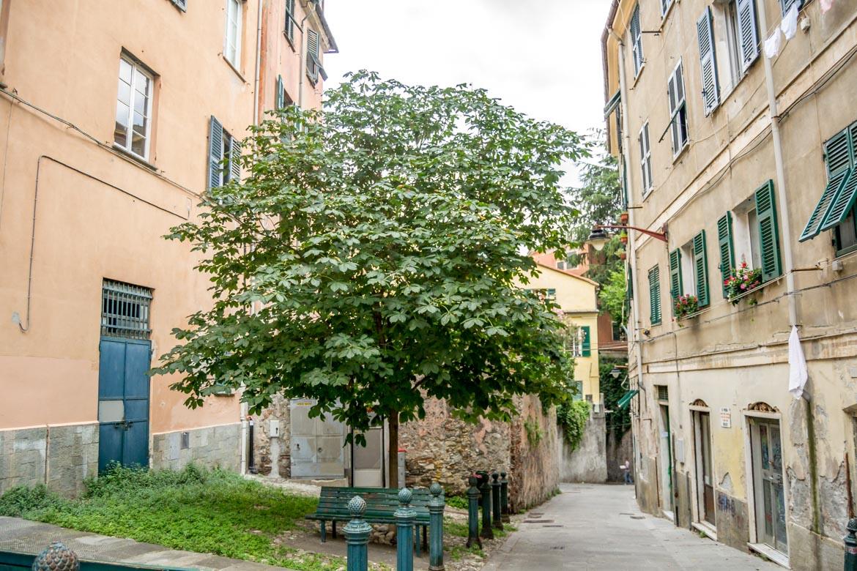 Genova Carmine scuola panoramica -In- Viaggio Con Monica
