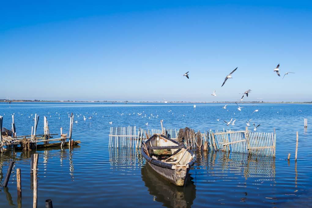 Barche nella laguna di Lesina