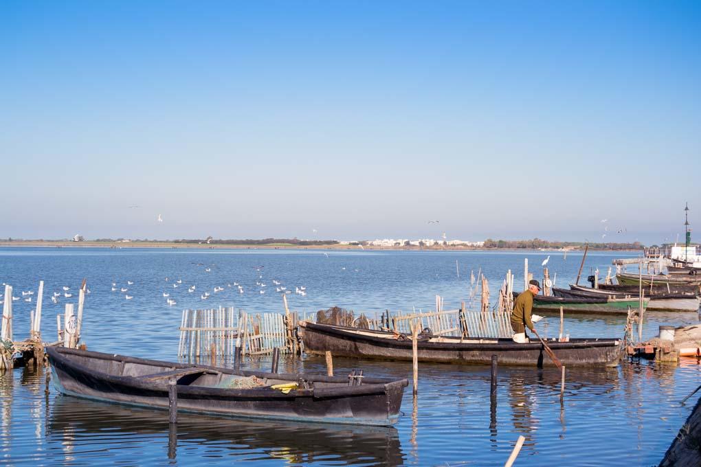 Lesina, barche e pescatori