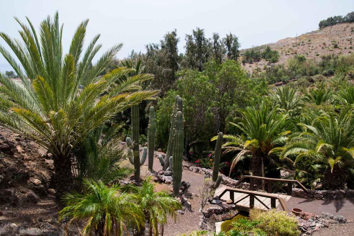 Giardino botanico Fuerteventura