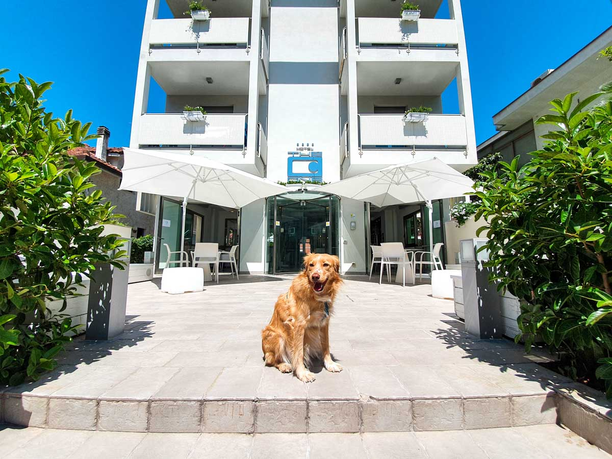 Ingresso Hotel Pet Friendly a Riccione