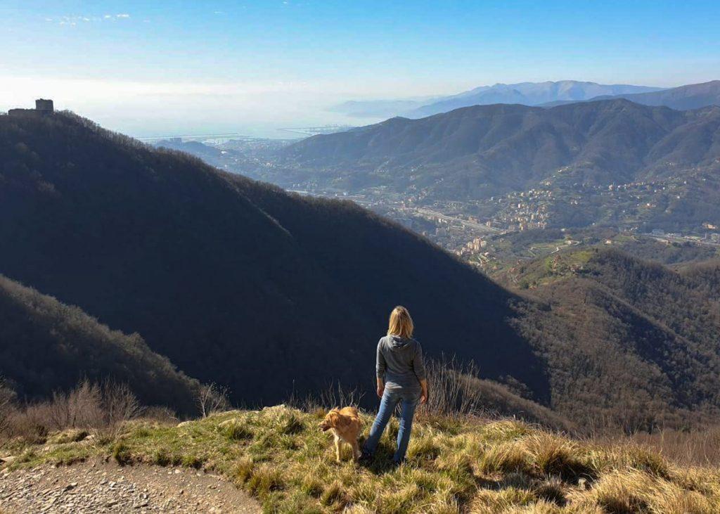 Vista Valpolcevera forti Genova