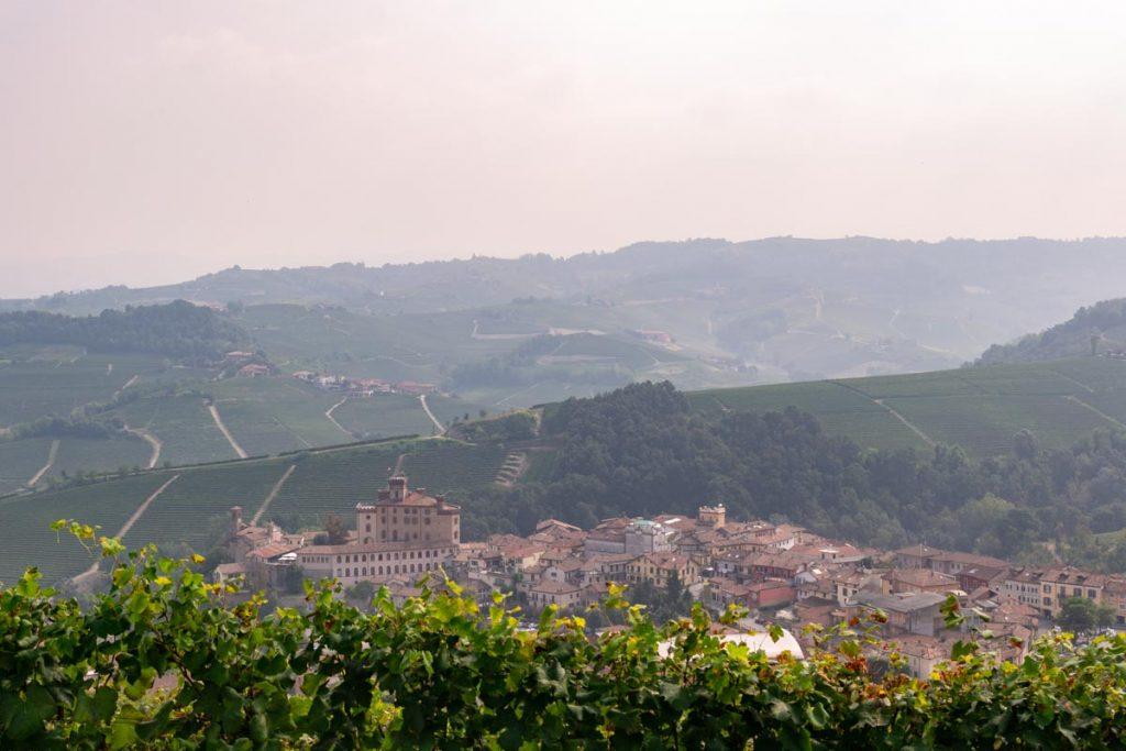 Barolo colline e castello